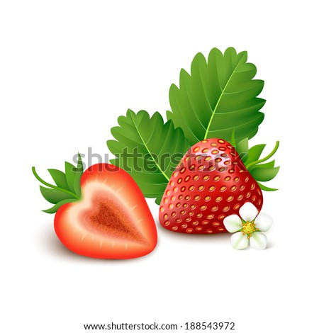 Whole strawberry with slice, flower and leaves isolated on white background. Vector illustration.  - stock vector