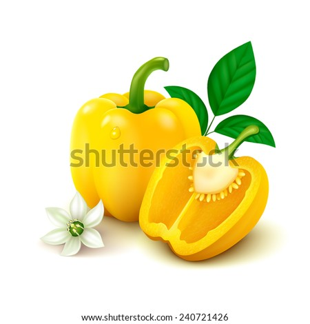Whole yellow bell pepper (bulgarian pepper) with half, flower and leaves isolated on white background. Vector illustration. - stock vector