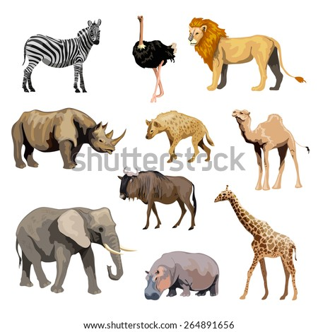 Wild african animals set with zebra ostrich lion rhinoceros isolated vector illustration - stock vector