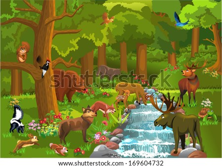 wild animals in the forest - stock vector