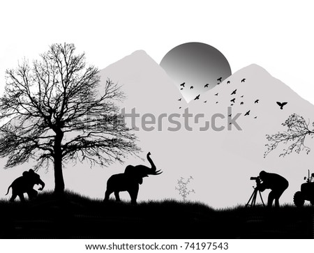 Wild elephants silhouette on jungle landscape, shooting by a photographer, vector illustration - stock vector