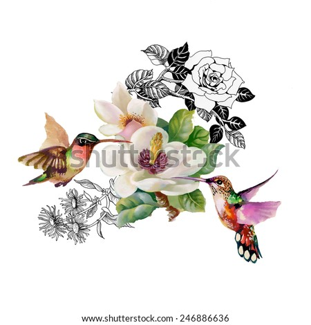 Wild exotic birds on branch with flowers on white background vector illustration - stock vector
