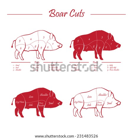 Wild hog, boar game meat cut diagram scheme - elements set red on white background - stock vector