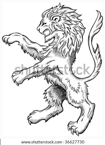 Wild Lion - stock vector