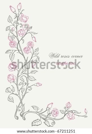 Wild roses decorative corner - stock vector
