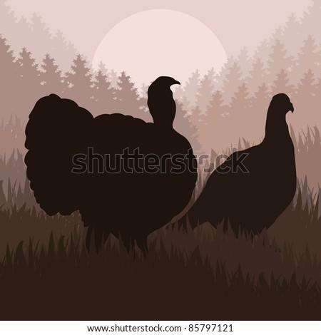Wild turkey hunting season landscape background illustration - stock vector