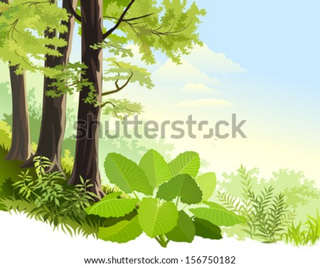 Wilderness of  Amazon rain forest - stock vector