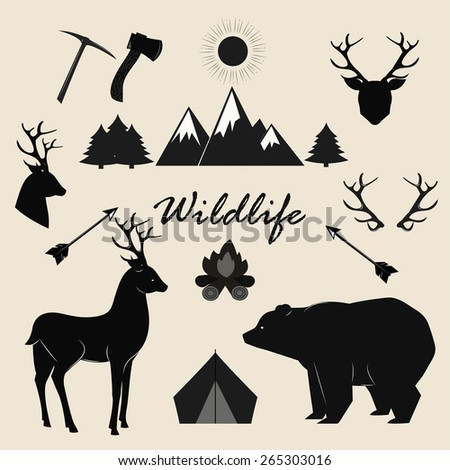 Wildlife, camping and adventure vector elements set.  - stock vector