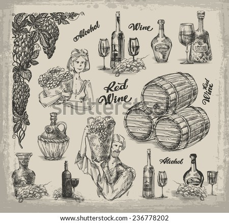 Wine. Sketch on the theme of wine. Vector illustration - stock vector