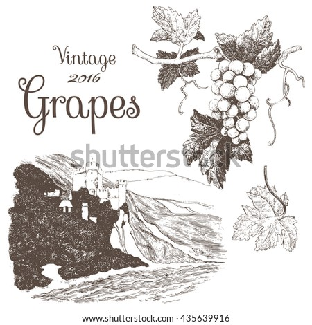 Winemaking 3.  Hand drawn illustrations of grapes and vineyard landscape. Ink pen picture in vector - stock vector