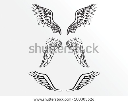 Wing pack - stock vector