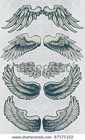 Wing Set 1 - stock vector