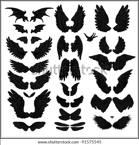 Wing silhouettes - stock vector