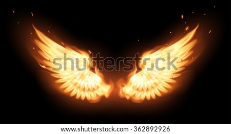 Wings in flame - stock vector