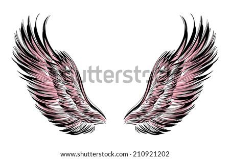 Wings outlined in black on a white background - stock vector