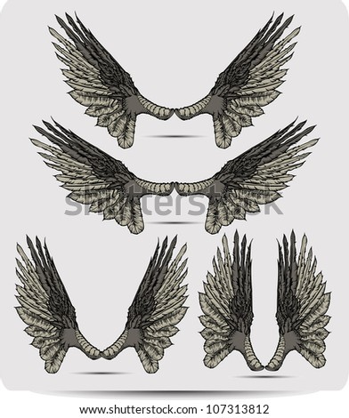 Wings set the raven, hand drawing. Vector illustration.