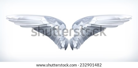 Wings, vector illustration - stock vector