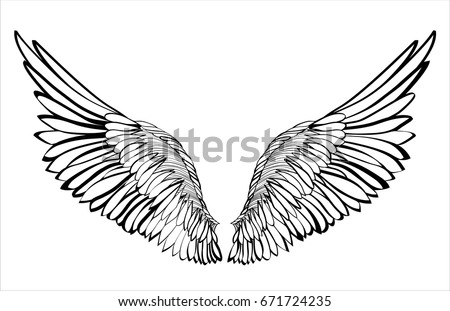 Stock Vector Wings Illustration On White Background Black And Style