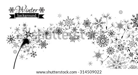Winter and Summer. Winter Dandelion Background. Black flying dandelion fluffs and snowflakes on white background. There is place for your text.  - stock vector