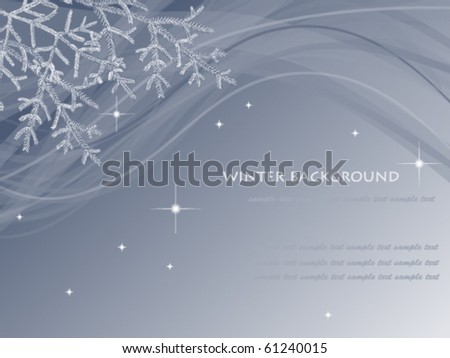 winter background with  fir branches - stock vector