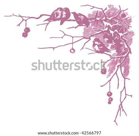 winter scene with birds and branches, retro engraving, two-color vector illustration - stock vector