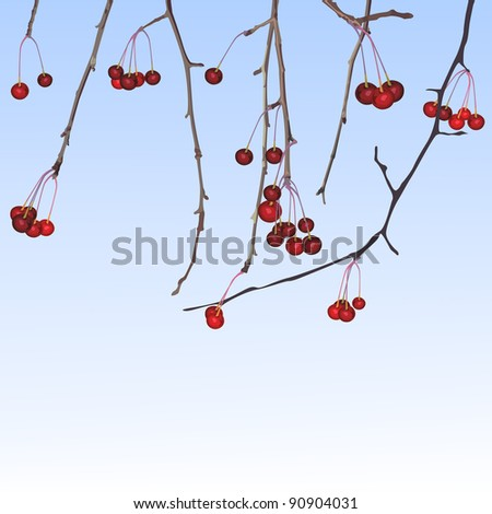 Winter small apples - stock vector