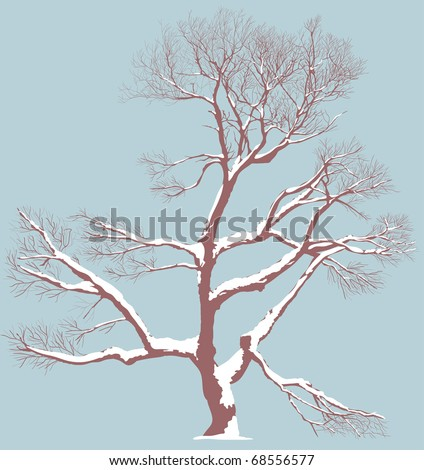 Winter tree - stock vector
