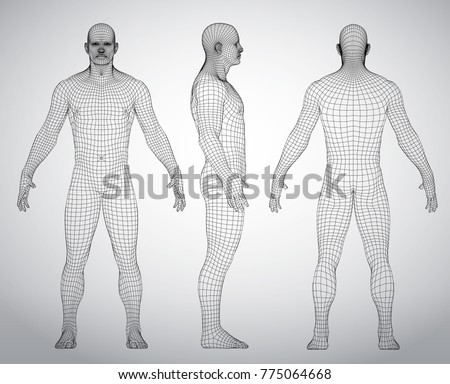 Wire Frame Human Full Body Virtual Stock Vector 775064668 ...