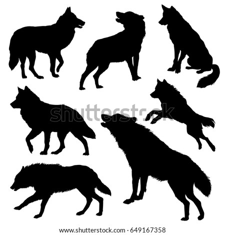 wolf silhouette set vector illustration