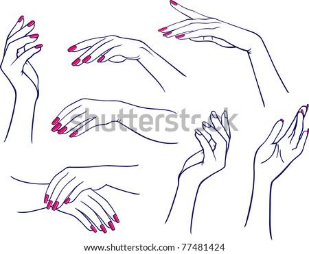 Woman's hands - stock vector