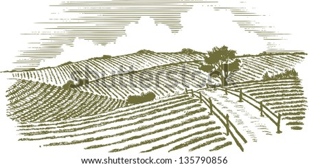 Woodcut style illustration of a country scene. - stock vector