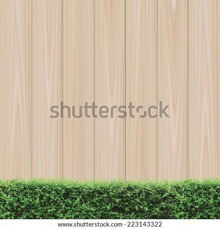 Wooden wall and green shrub fence. Natural abstract background. - stock vector