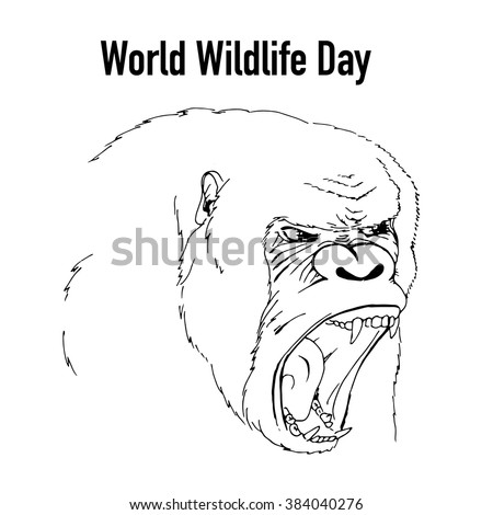 World wildlife Day. Hand drawn screaming gorilla. Vector stock illustration - stock vector