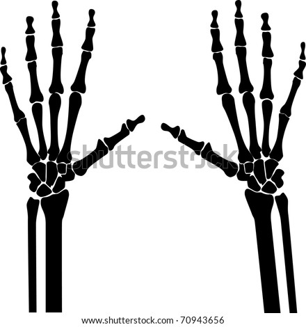 x-ray hands silhouette - stock vector