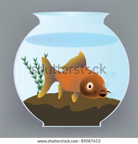yellow fish into aquarium - stock vector