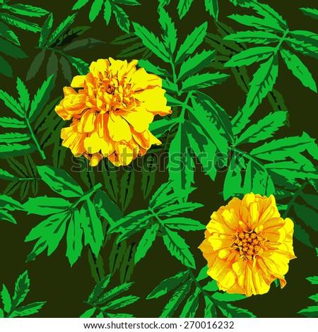 yellow flower on black background, Roadside wildflowers seamless pattern  - stock vector