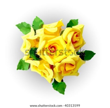Yellow roses - stock vector