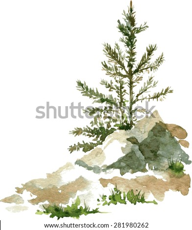 young pine trees and rocks drawing by watercolor, aquarelle sketch of wild nature, painting forest, hand drawn vector illustration - stock vector