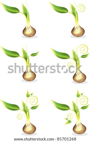 Young Seed Sprout - stock vector