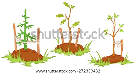 young trees planted in the soil. isolated objects  - stock vector