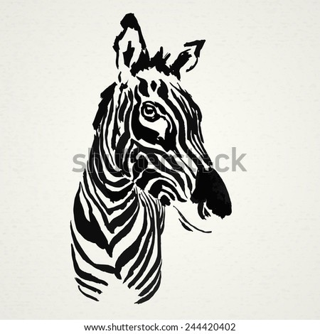 Zebra hand drawn. Vector illustration. Realistic sketch. Zoo. - stock vector