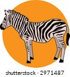 Zebra on an orange circle background - stock vector