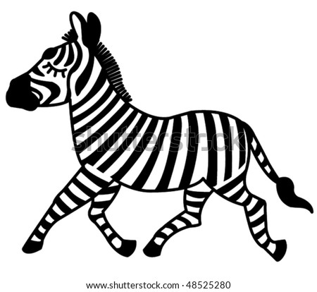 Zebra on white. Vector illustration.