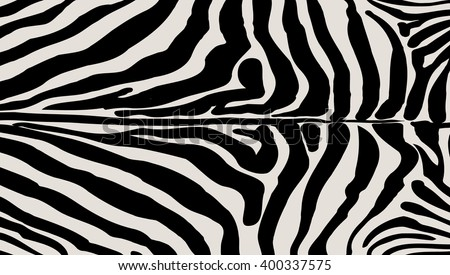 Zebra print zebra skin texture african stock photo photo vector zebra print zebra skin texture african animal pelt background black and white stripes maxwellsz