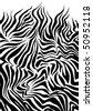 Zebra skin - stock vector