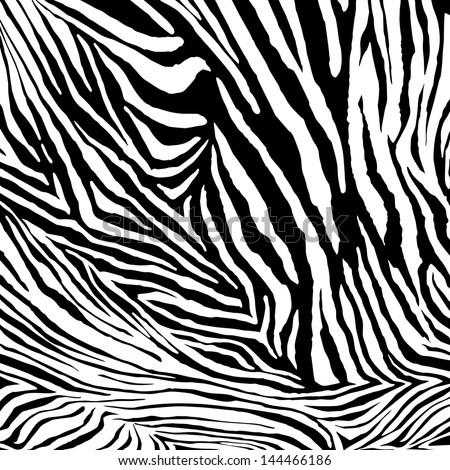 Zebra vector texture - stock vector