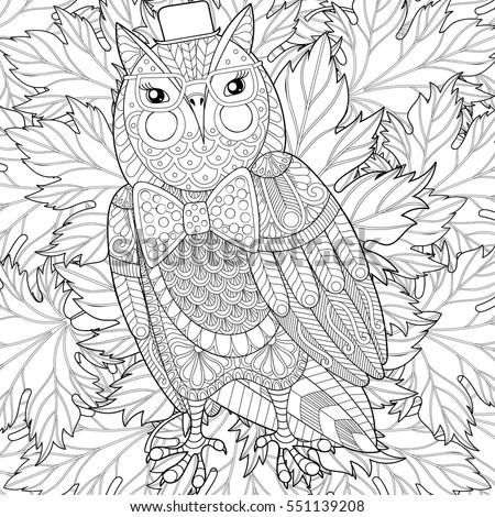 Zentangle Owl Painting For Adult Anti Stress Coloring Page Color Book Cover Bird With