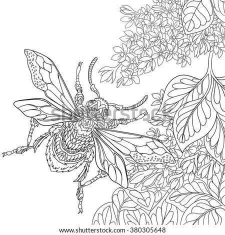 Zentangle Stylized Cartoon Beetle Insect Flying Stock ...