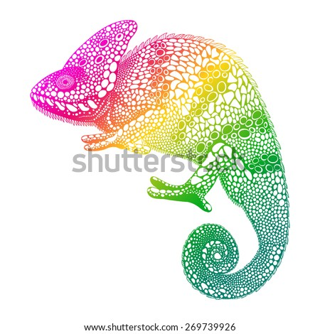 Zentangle stylized  multi coloured Chameleon. Hand Drawn Reptile vector illustration  in doodle style. Sketch for tattoo or print. Animal collection. - stock vector