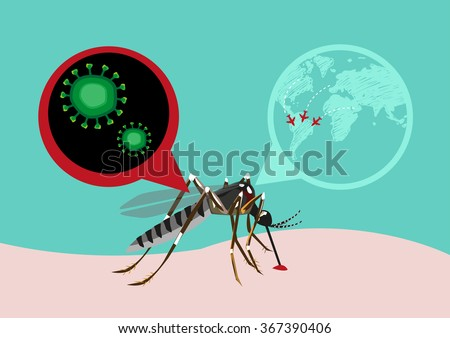 Zika Virus Outbreak and Travel Alert concept. Transmitted by A. aegypti mosquito and it is linked to cause microcephaly on infected pregnant women. Editable Clip Art. - stock vector